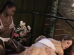 African babes sharing white schlong in threeway