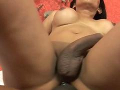 Kinky ts cutie gets cuz of a long fucking ride