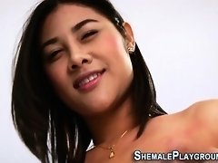 Solo shemale tugs for cum